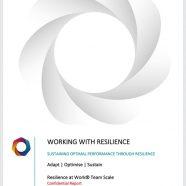 Team Assessment (includes PDF workbooks)